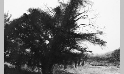 Kohán Ferenc kövei és fái