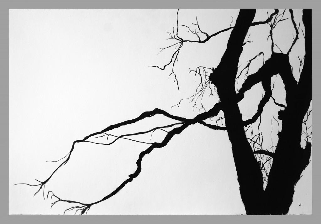 Ágak,tus,papír,63,5x94 cm. 2015 (2)