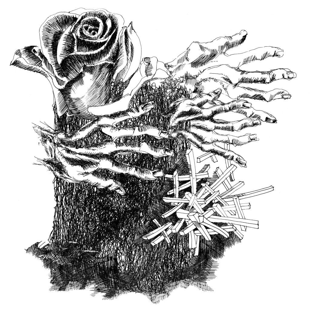 rozsa
