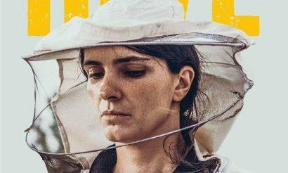 Oscar-jelölt filmek a 17. CineFesten